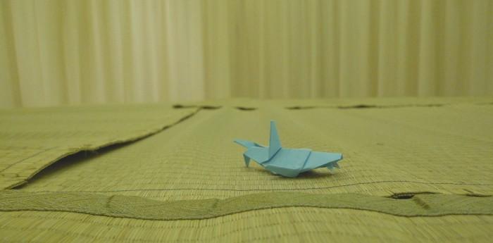 sharkplatform2